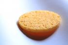 Wash sponge